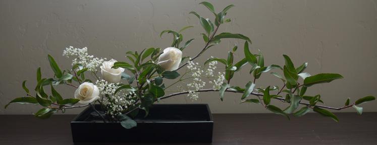 vancouver ikebana association the art of japanese flower arranging. Black Bedroom Furniture Sets. Home Design Ideas